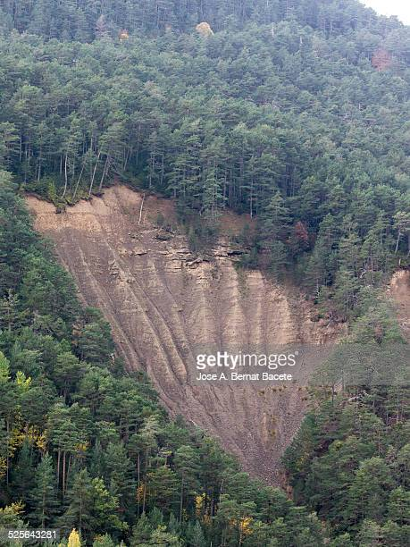 landslide of lands in a forest of the pyrenees - landslide stock pictures, royalty-free photos & images