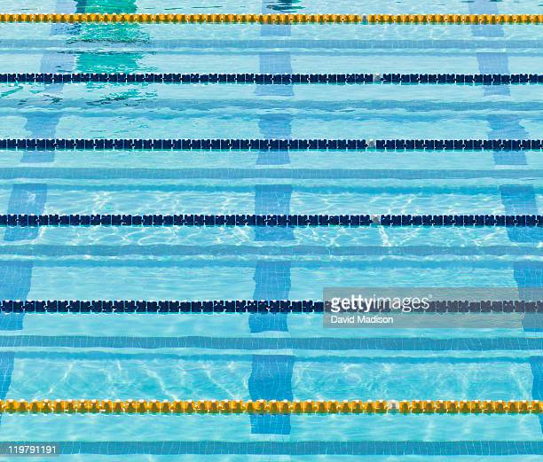 Lane markers in empty swimming pool.