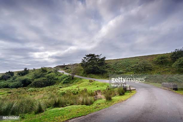 Lane through Exmoor