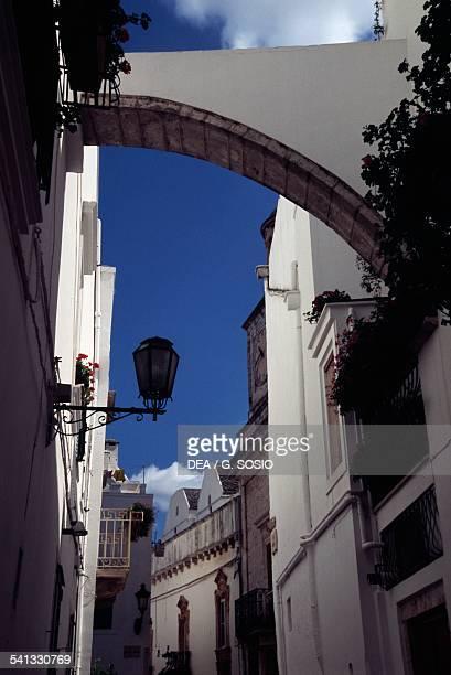 Lane with traditional houses Locorotondo Le Murge Apulia Italy