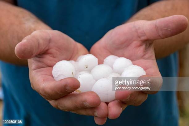 lange hail being held in hands, colorado, usa - hail stock pictures, royalty-free photos & images