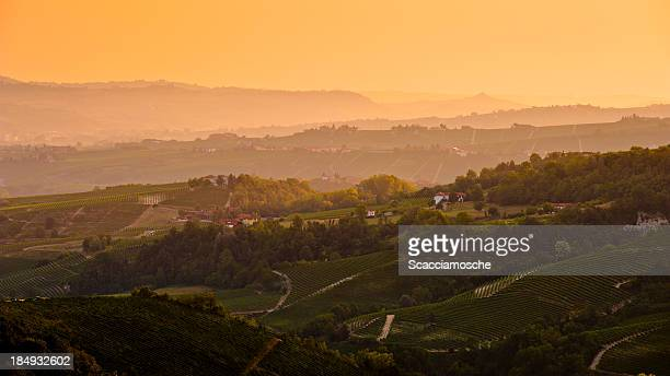 langhe, piedmont, italy - piedmont italy stock pictures, royalty-free photos & images
