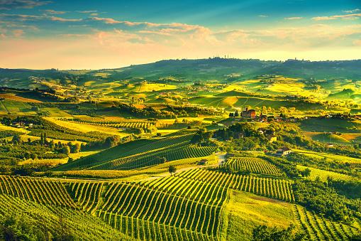 Langhe vineyards sunset panorama, Grinzane Covour, Piedmont, Italy Europe. 1034183700