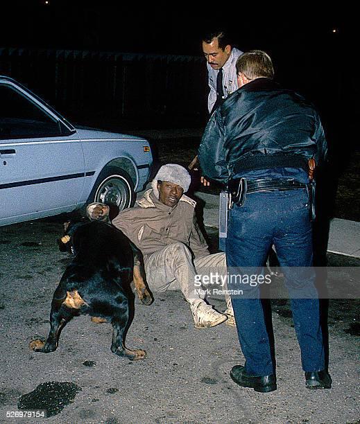 Langley Park, Maryland. 1988 Prince Georges County Maryland police officers use a canine to help them apprehend a suspected crack cocaine dealer who...