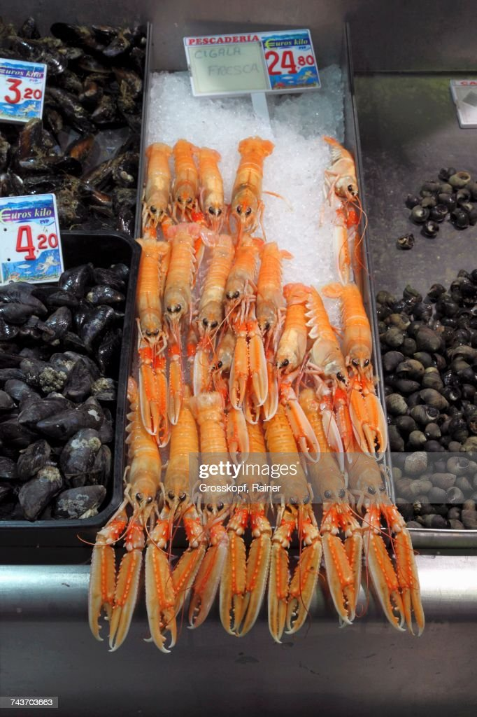Langoustines and mussels at a fish market in Bilbao, Basque Country, Spain : Stock-Foto