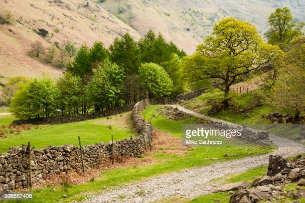langstrath path - mike caithness stock pictures, royalty-free photos & images
