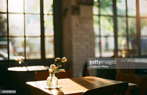 languid afternoon - focagem no primeiro plano imagens e fotografias de stock