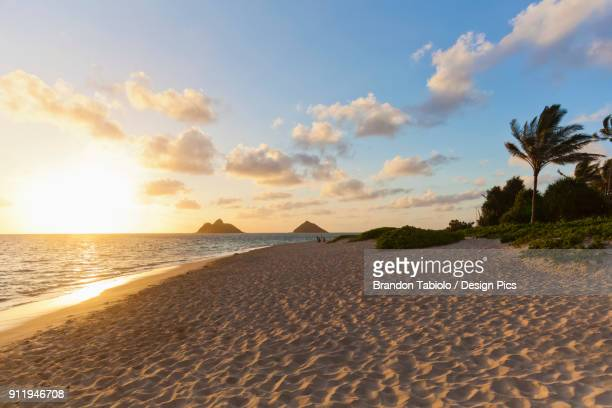 lanikai beach overlooking the mokulua islands, known as the twin islands, at sunrise - kailua stock pictures, royalty-free photos & images