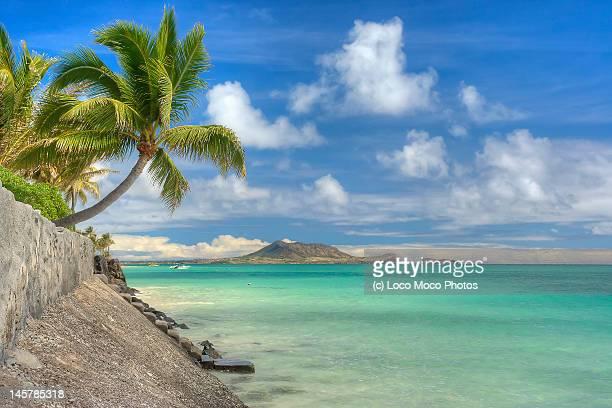 Lanikai Beach Paradise