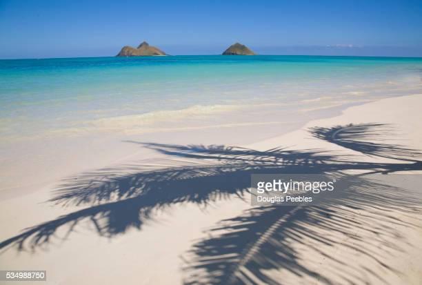 lanikai beach - kailua stock pictures, royalty-free photos & images
