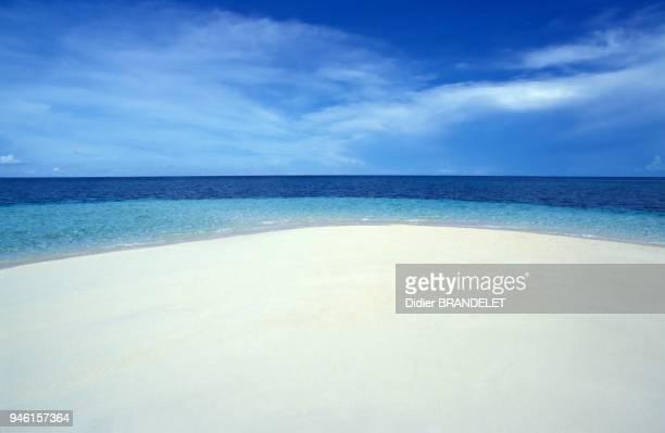 Lankayan Island, Malaysia, Indo Pacific Ocean.