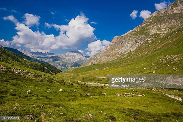 lanscape near the col (mount) de l'iseran - savoie stock pictures, royalty-free photos & images