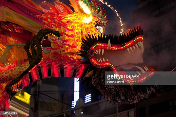Lantern Festival Fire Dragon