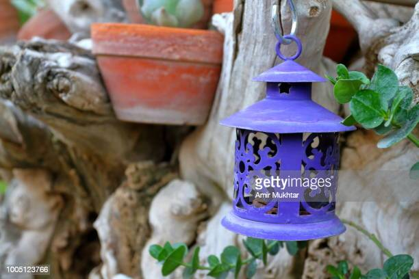 Lantern hanging in home garden