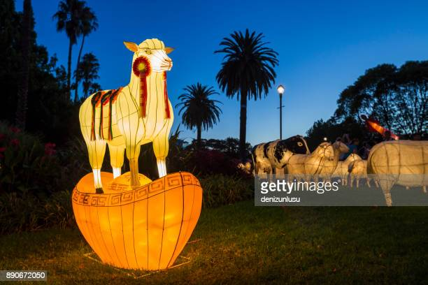 lantern lights - chinese lantern festival stock pictures, royalty-free photos & images