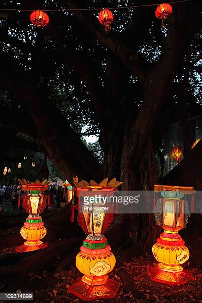 Lanterns are displayed in Albert Park during the Auckland Lantern Festival on February 18 2011 in Auckland New Zealand Record crowds attended the...