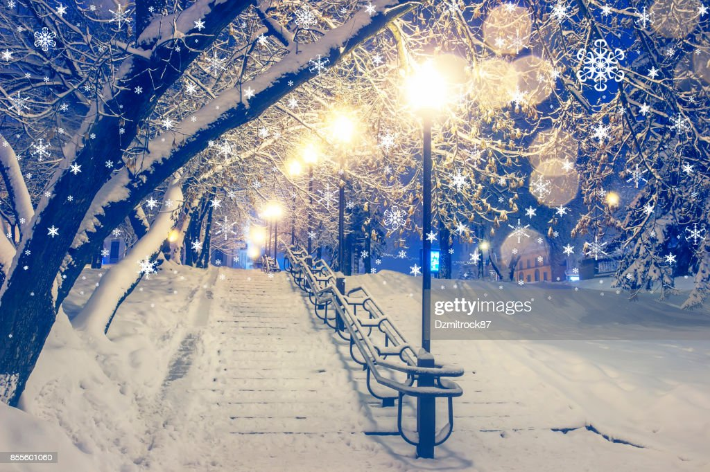 Laternen In Winter Park Am Abend Schöne Schnee Zu Weihnachten ...