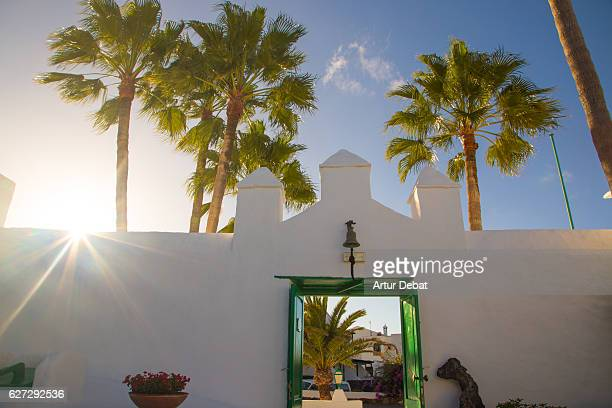 Lanzarote island view with traditional white houses and green colors with the sunset light and beautiful palm trees.
