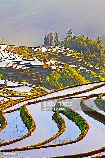 laohuzui terraces,yuanyang,china - yuanyang stock pictures, royalty-free photos & images