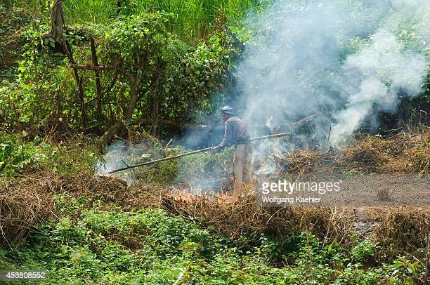 Laos Near Luang Prabang Mekong River Farmers Burning Forest To Clear For Agriculture