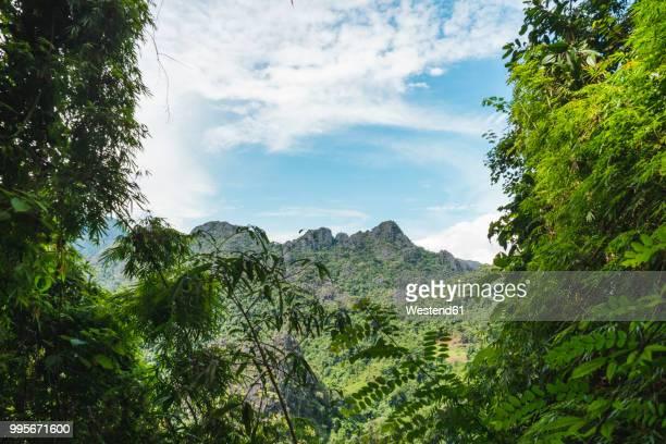 Laos, Vang Vieng, jungle landscape with mountain