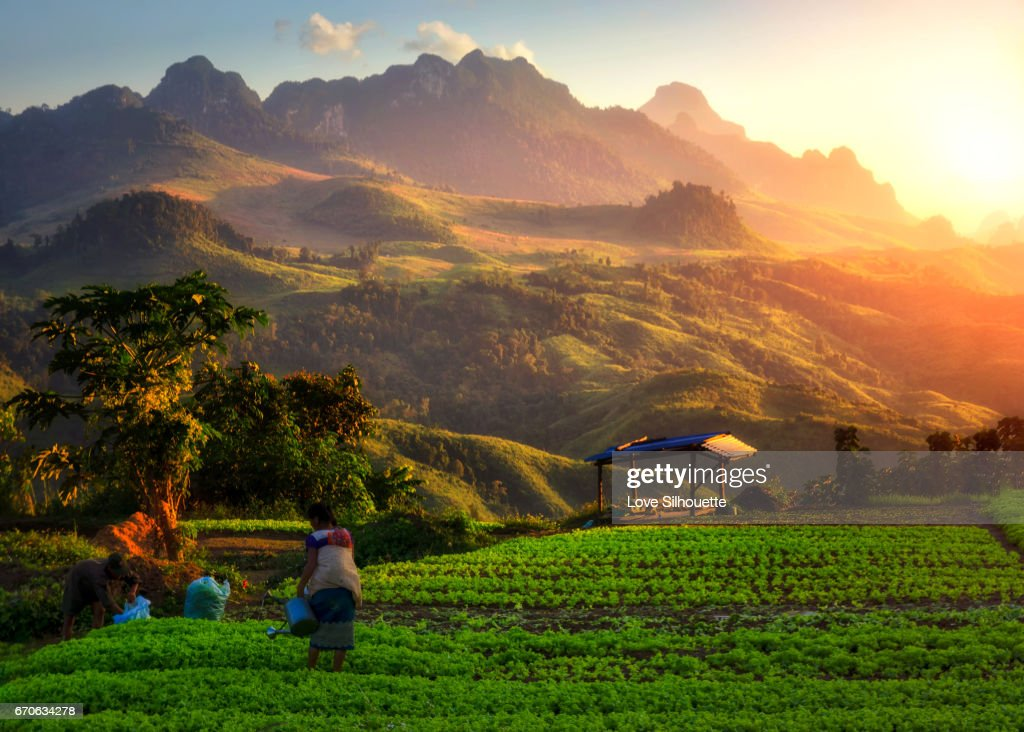 Laos view point : Stock Photo