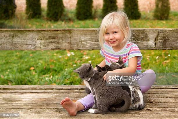 Lap full of kittens