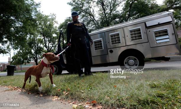 Lapez Moore an officer with the City of Detroit Animal Control Lapez Moore takes a pit bull to be quarantined aftewr it bit someone in Detroit...