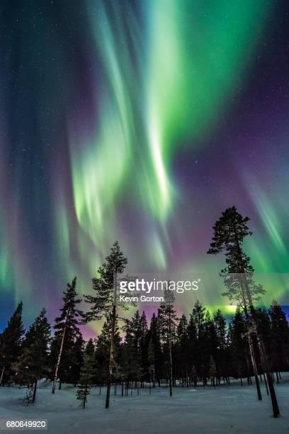 lapland aurora - swedish lapland stock photos and pictures