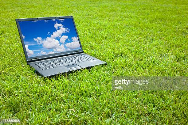laptop and grass - free walpaper stock photos and pictures
