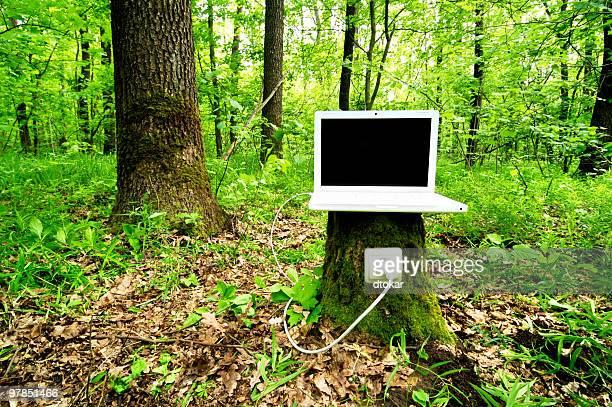 Laptop auf-Tor lädt mit Hilfe der Natur