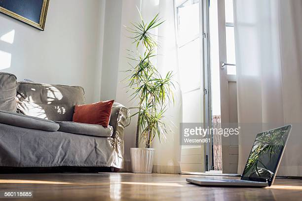 laptop standing on wooden floor of a living room - grooming product stock photos and pictures
