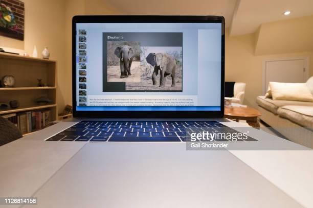 Laptop Workflow