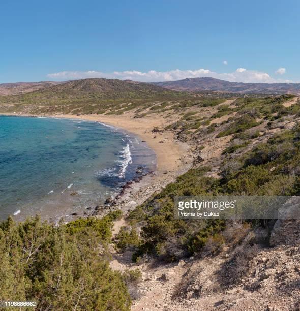 Lara Beach, Akamas Peninsula National Park, Cyprus, Cyprus, 30070093.