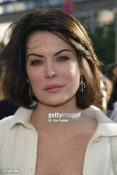 Lara Flynn Boyle during TFF premiere of Land of the Blind at Loews Lincoln Square Theater in New York NY United States