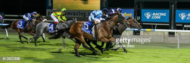 Lara's Web ridden by Brad Rawiller wins the XXXX Gold FM BM64 Handicap at Racingcom Park Racecourse on February 01 2018 in Pakenham Australia
