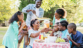 Large African-American family having backyard cookout