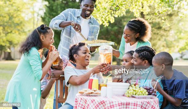 large african-american family having backyard cookout - large family stock pictures, royalty-free photos & images