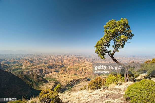 a large and wide mountain range in ethiopia  - ethiopia stock photos and pictures