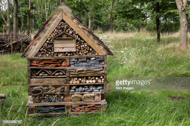 large bug house with several layers of different materials in a garden. - orchard stock pictures, royalty-free photos & images