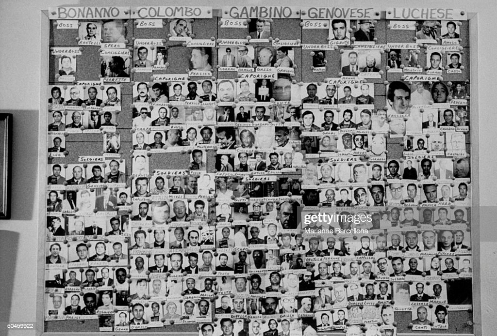 Large bulletin board showing photographs of bosses, underbosses, capos and soldiers in five NY organized crime families, Bonanno, Colombo, Gambino, Genovese and Luchese.