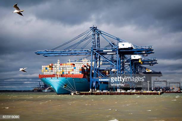Large cargo ship with flying seagulls at Felixstowe