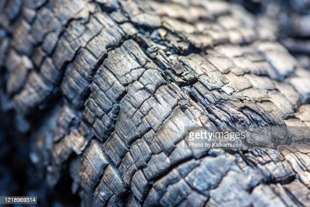 large charred log in fire pit - coal stock pictures, royalty-free photos & images