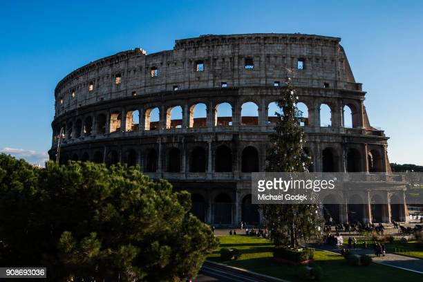 a large christmas tree in front of the coliseum with crowds of tourists walking around - natale di roma foto e immagini stock