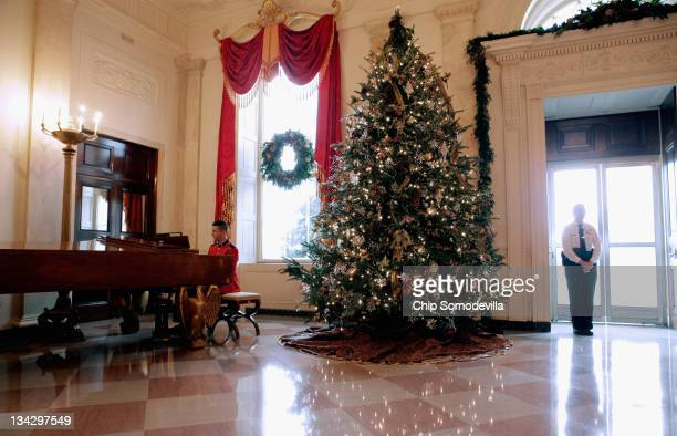 A large Christmas tree stands to one side of the North Portico entrance in the Entrance Hall during the first viewing of the 2011 White House...