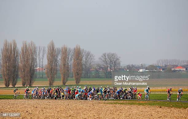 Large crash in the pelaton during the E3 Harelbeke Cycle Race on March 28, 2014 in Harelbeke, Belgium.