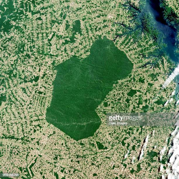 Large deforestation surrounds the Parakana Indigenous Reserve in the Brazilian State of Para Northern Region of Brazil