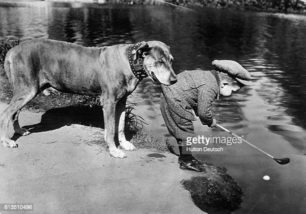 A large dog holds onto his boy as the small golfer leans over a water hazard to play a floating golf ball