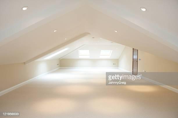 Large empty loft room