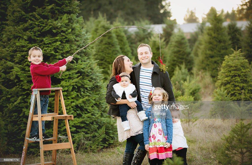 Large Family Christmas Card Photo In Christmas Tree Farm Stock Photo ...